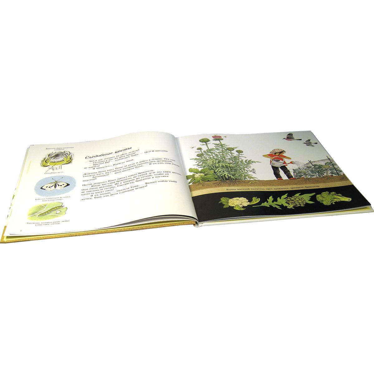 Книга как растут овощи скачать